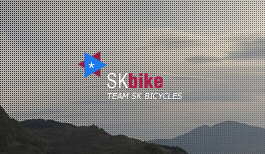 *SKbike